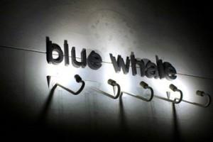 blue-whale logo